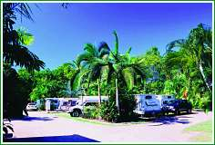 Tropical Hibiscus Caravan Park - Bundaberg Accommodation