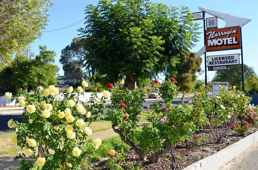 Narrogin Motel - Bundaberg Accommodation