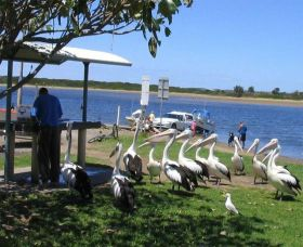 Mountain View Caravan and Mobile Home Village - Bundaberg Accommodation