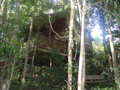 Adjinbilly Rainforest Retreat Cabins - Bundaberg Accommodation