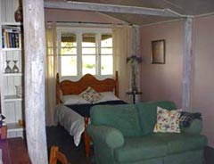 Bunnyconnellen Olive Grove and Vineyard - Bundaberg Accommodation