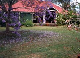 Minmore Farmstay Bed and Breakfast - Bundaberg Accommodation