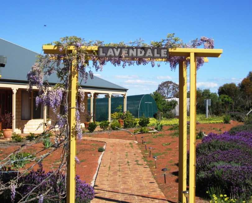 Lavendale Farmstay and Cottages - Bundaberg Accommodation