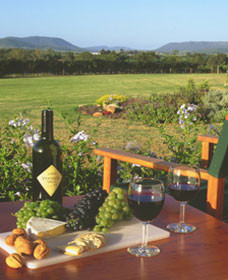 Tranquil Vale Vineyard Cottages - Bundaberg Accommodation