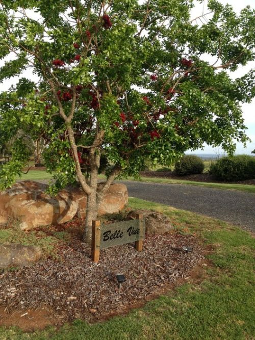 Belle Vue Studio - Bundaberg Accommodation