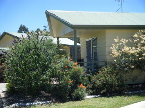 Pepper Tree Cabins - Bundaberg Accommodation