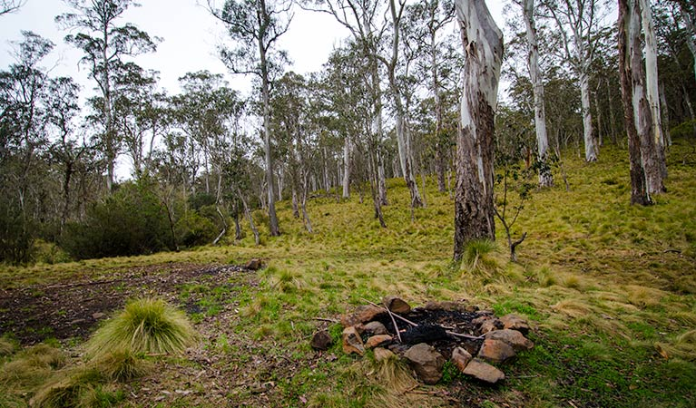 Gummi Falls campground - Bundaberg Accommodation