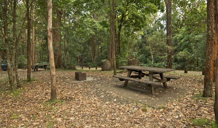 Sheepstation Creek campground - Bundaberg Accommodation