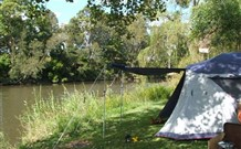 Williams River Holiday Park - Bundaberg Accommodation