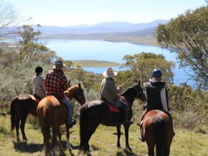 Reynella Homestead and Horseback Rides - Bundaberg Accommodation