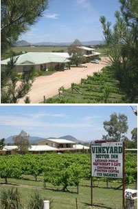 Mudgee Vineyard Motor Inn - Bundaberg Accommodation