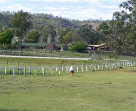 Kellarni Downs Farmstay-Scenic Rim - Bundaberg Accommodation