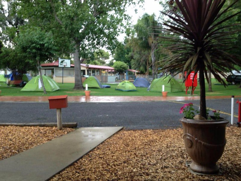 Young Caravan Tourist Park - Bundaberg Accommodation