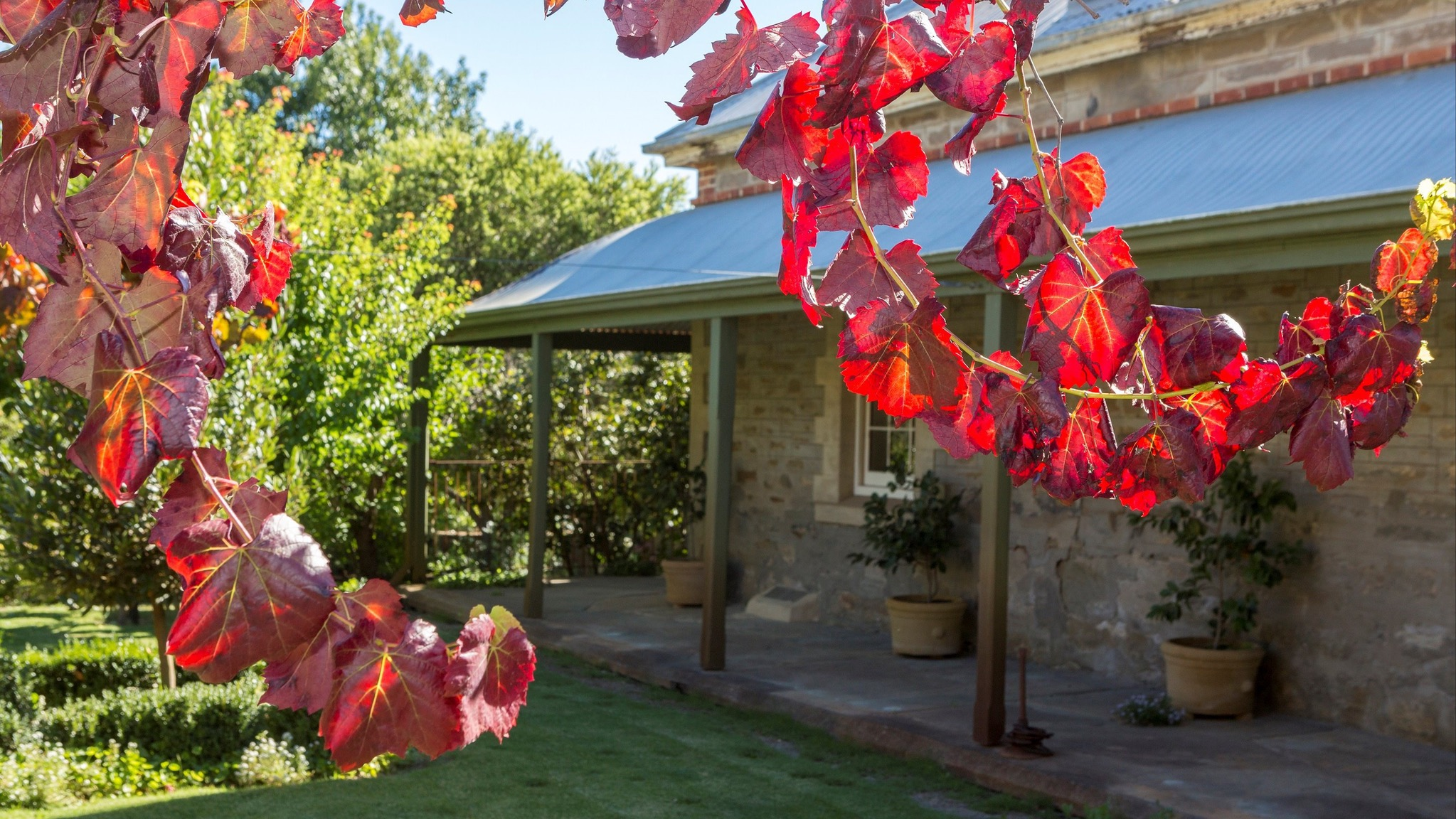 Grand Cru Estate Homestead - Bundaberg Accommodation