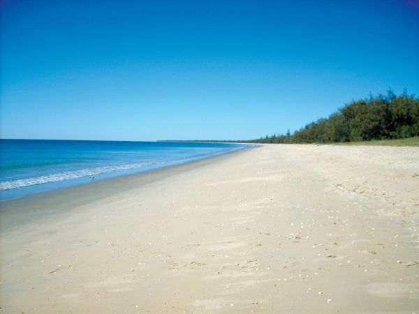 Woodgate Beach Tourist Park - Bundaberg Accommodation