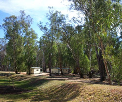 Balranald Caravan Park - Bundaberg Accommodation