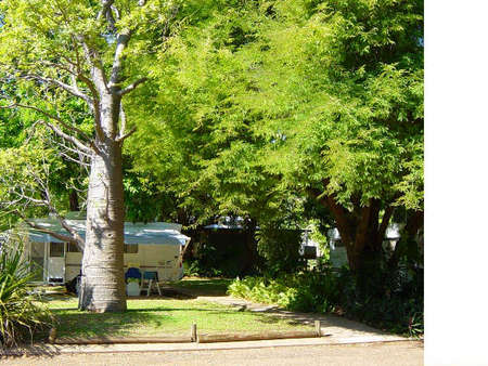 Town Caravan Park - Bundaberg Accommodation