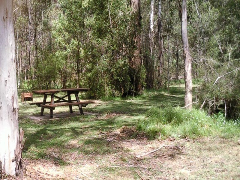 Mulloon Creek campground - Bundaberg Accommodation