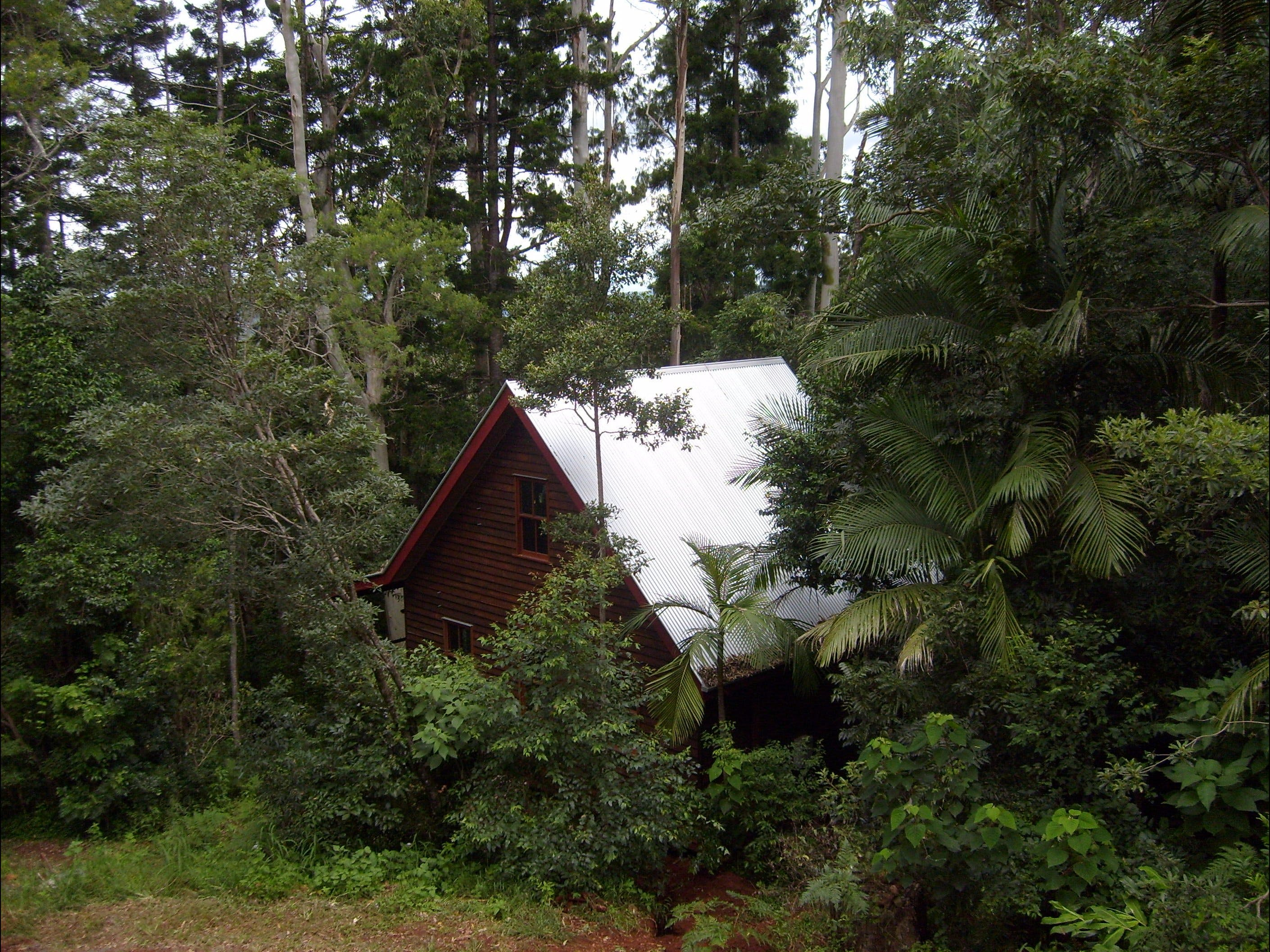 Turkeys Nest Rainforest Cottages Mt Glorious - Bundaberg Accommodation