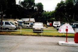 Windsor Gardens Caravan Park - Bundaberg Accommodation