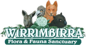 Wirrimbirra Sanctuary - Bundaberg Accommodation