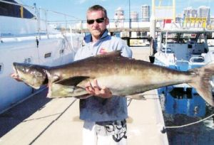 True Blue Fishing Charters - Bundaberg Accommodation