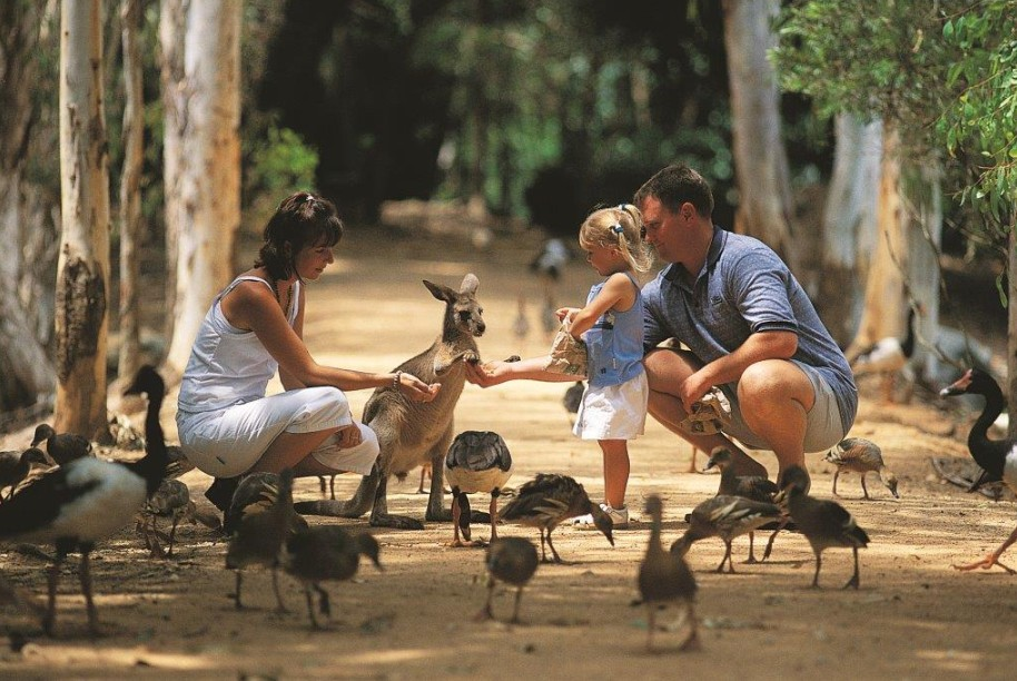Billabong Sanctuary - Bundaberg Accommodation