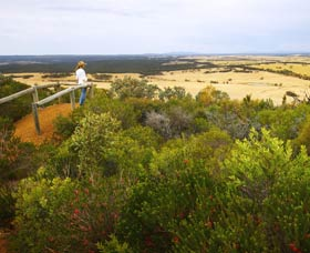 Archer Drive Scenic Drive and Lookout - Bundaberg Accommodation