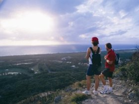 Mount Coolum National Park - Bundaberg Accommodation