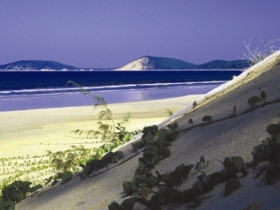 Cooloola Great Sandy National Park - Bundaberg Accommodation