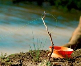 Charleville - Mangalore Warrego River Fishing Spot - Bundaberg Accommodation