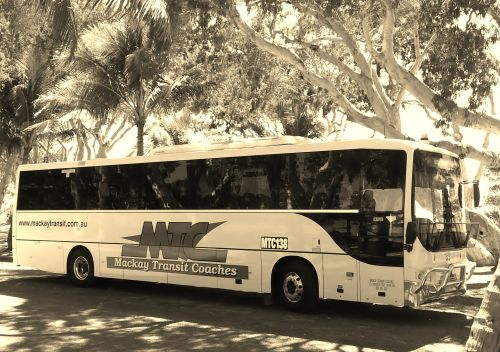 Mackay Transit Coaches - Bundaberg Accommodation