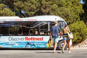 Rottnest Island Tour from Perth or Fremantle including Bus Tour - Bundaberg Accommodation