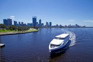 One-way Sightseeing Cruise between Perth and Fremantle - Bundaberg Accommodation