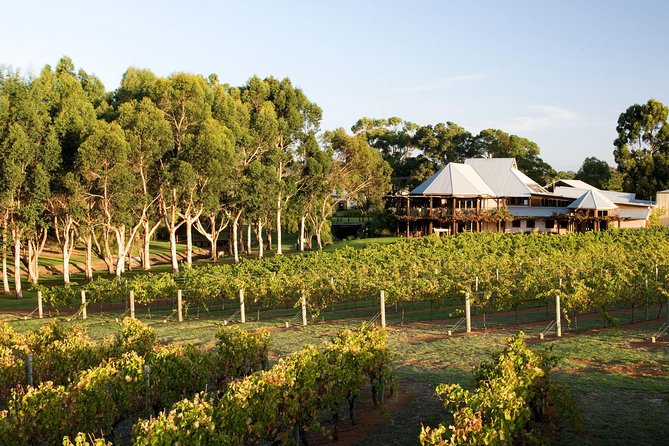 Margaret River and Geographe Bay Region Day Trip from Perth - Bundaberg Accommodation