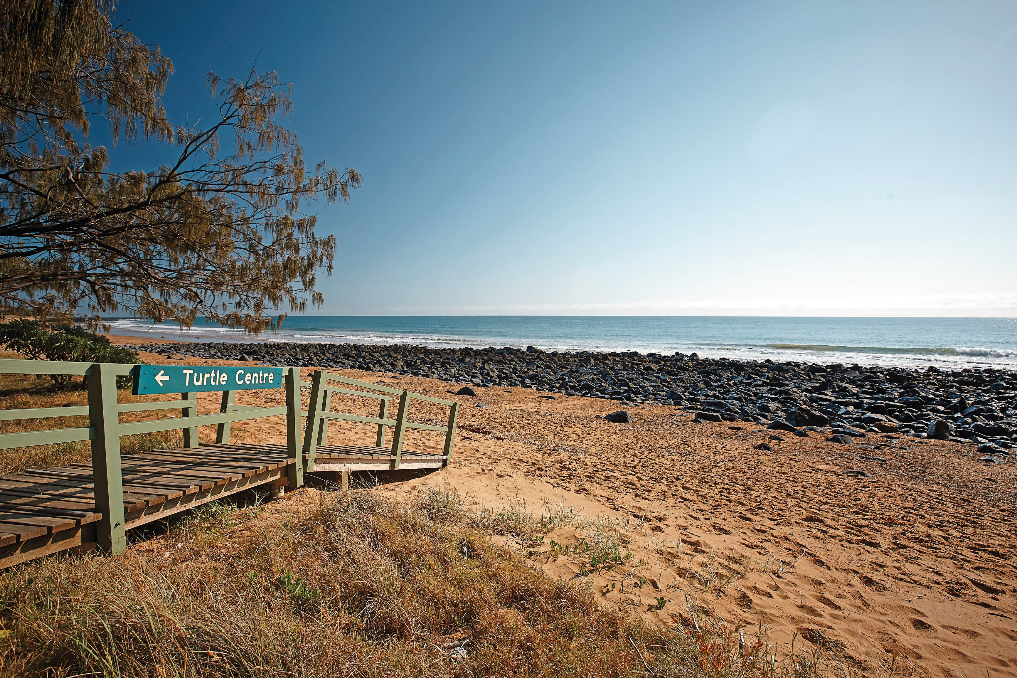 Mon Repos Beach - Bundaberg Accommodation