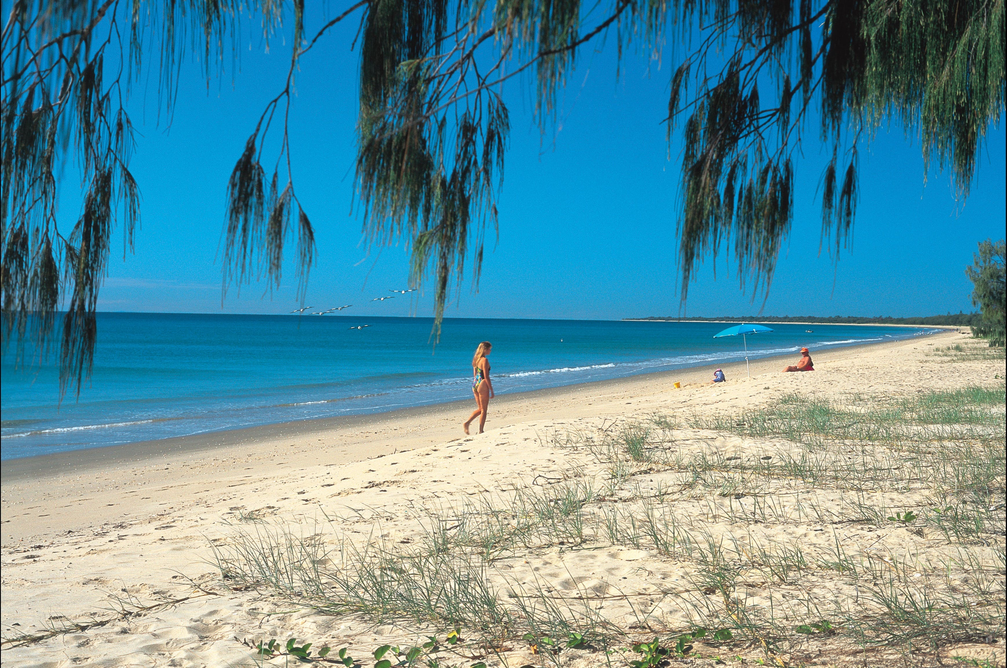 Woodgate Beach Park and Playground - Bundaberg Accommodation