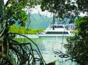 Cairns Harbour Cruises - Bundaberg Accommodation