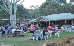 Bush Shack Brewery - Bundaberg Accommodation