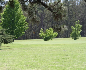 Inverell Golf Club - Bundaberg Accommodation