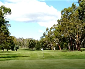 Cooma Golf Club - Bundaberg Accommodation