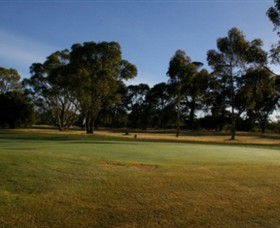Winchelsea Golf Club - Bundaberg Accommodation