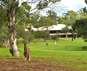 Pambula Merimbula Golf Club - Bundaberg Accommodation