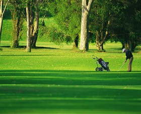 Foster Golf Club - Bundaberg Accommodation