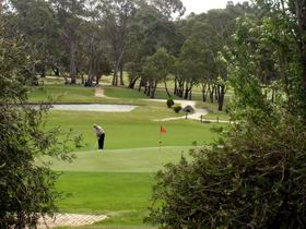 Mount Barker-Hahndorf Golf Club - Bundaberg Accommodation