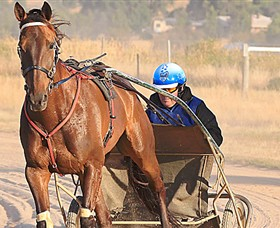 Ballarat  District Trotting Club