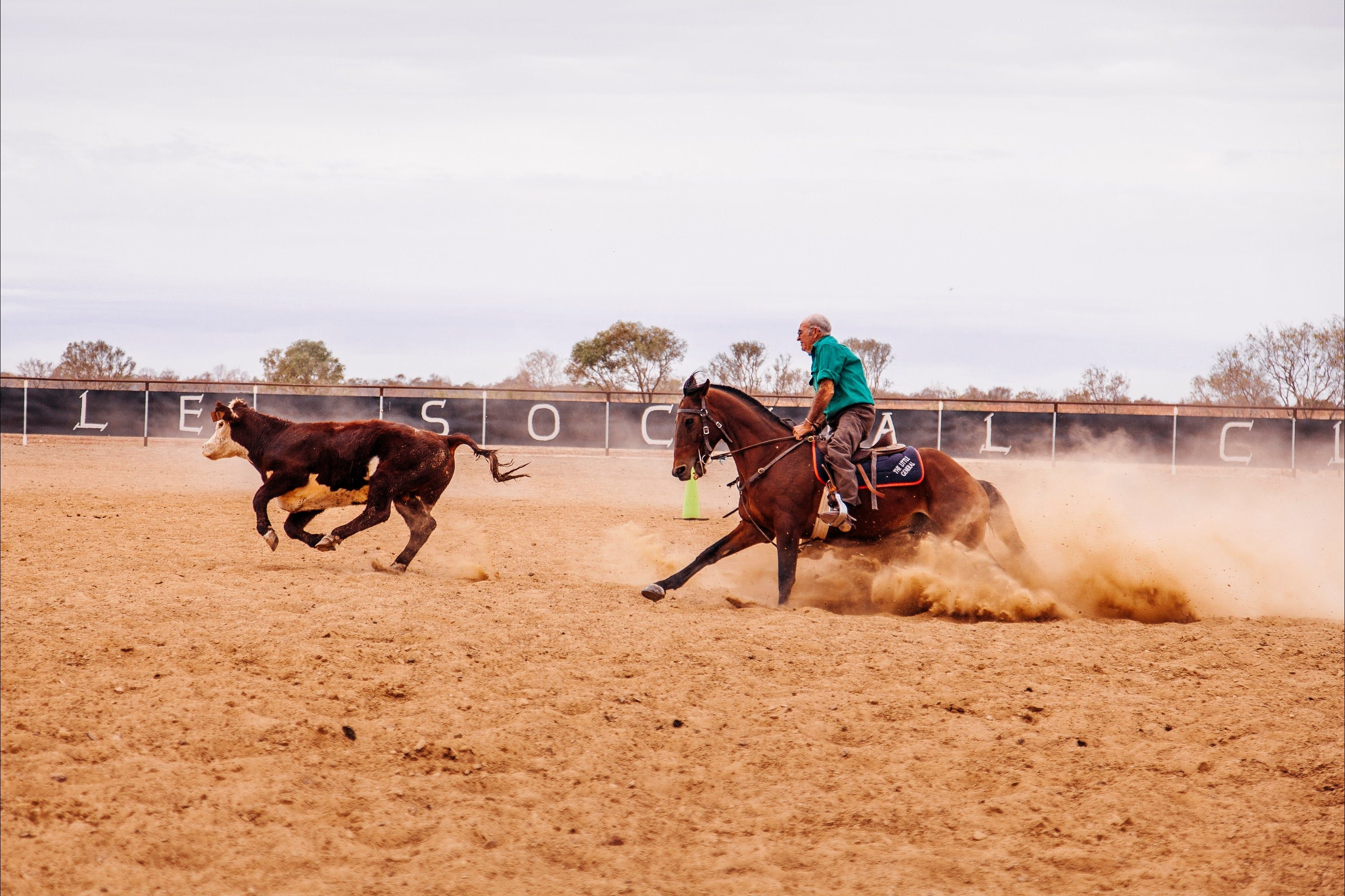 Birdsville Campdraft  Rodeo and Bronco Branding - Bundaberg Accommodation