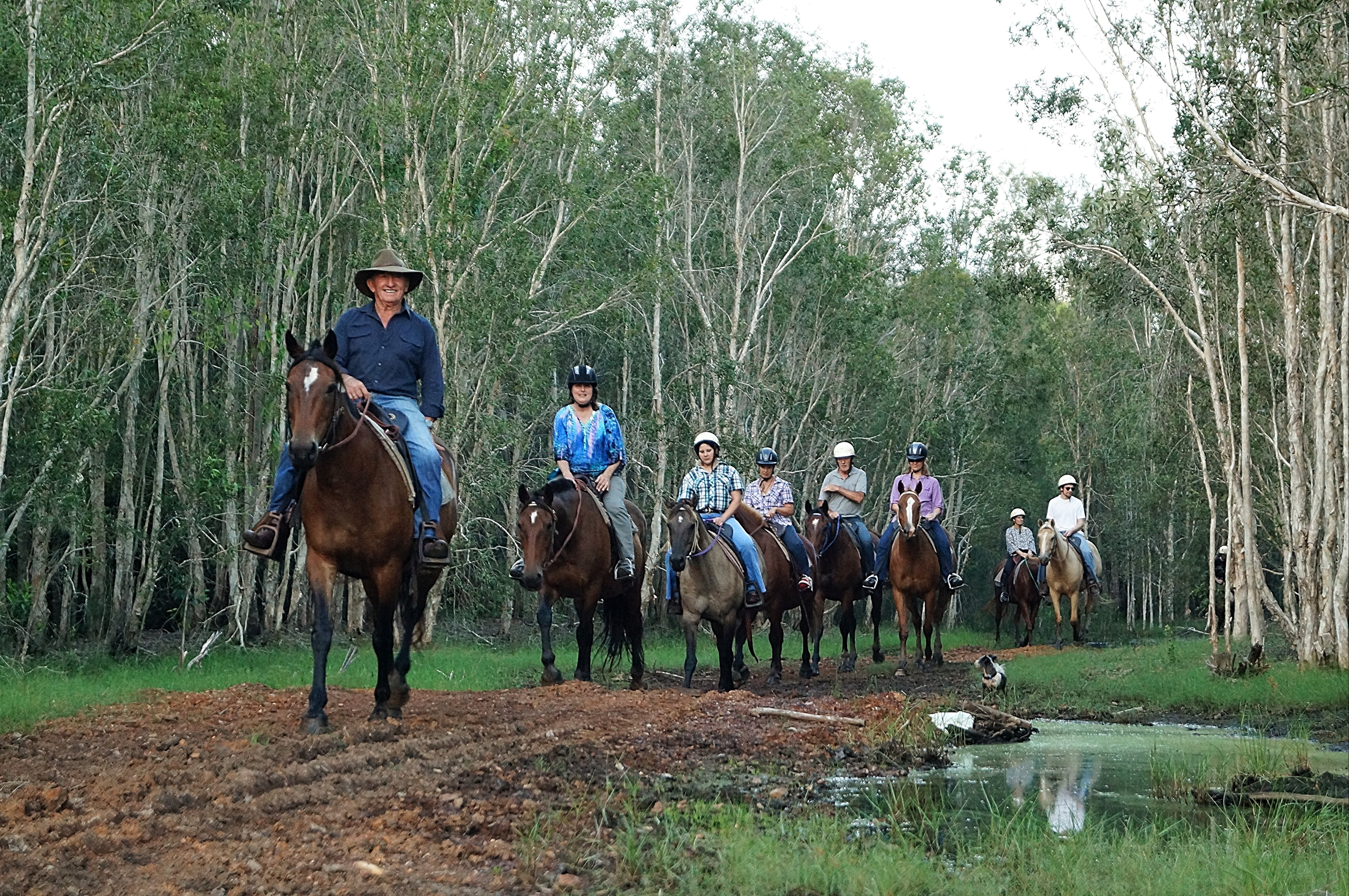 Night Horse Ride and Dinner - Bundaberg Accommodation