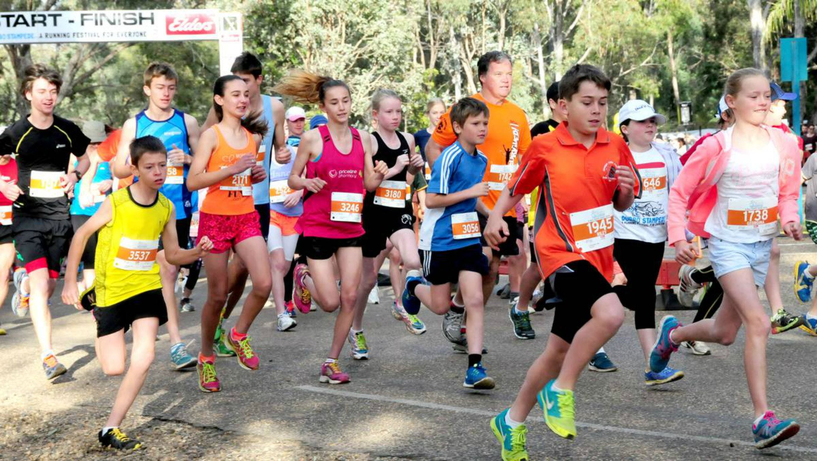 MAAS Group Dubbo Stampede Running Festival - Bundaberg Accommodation