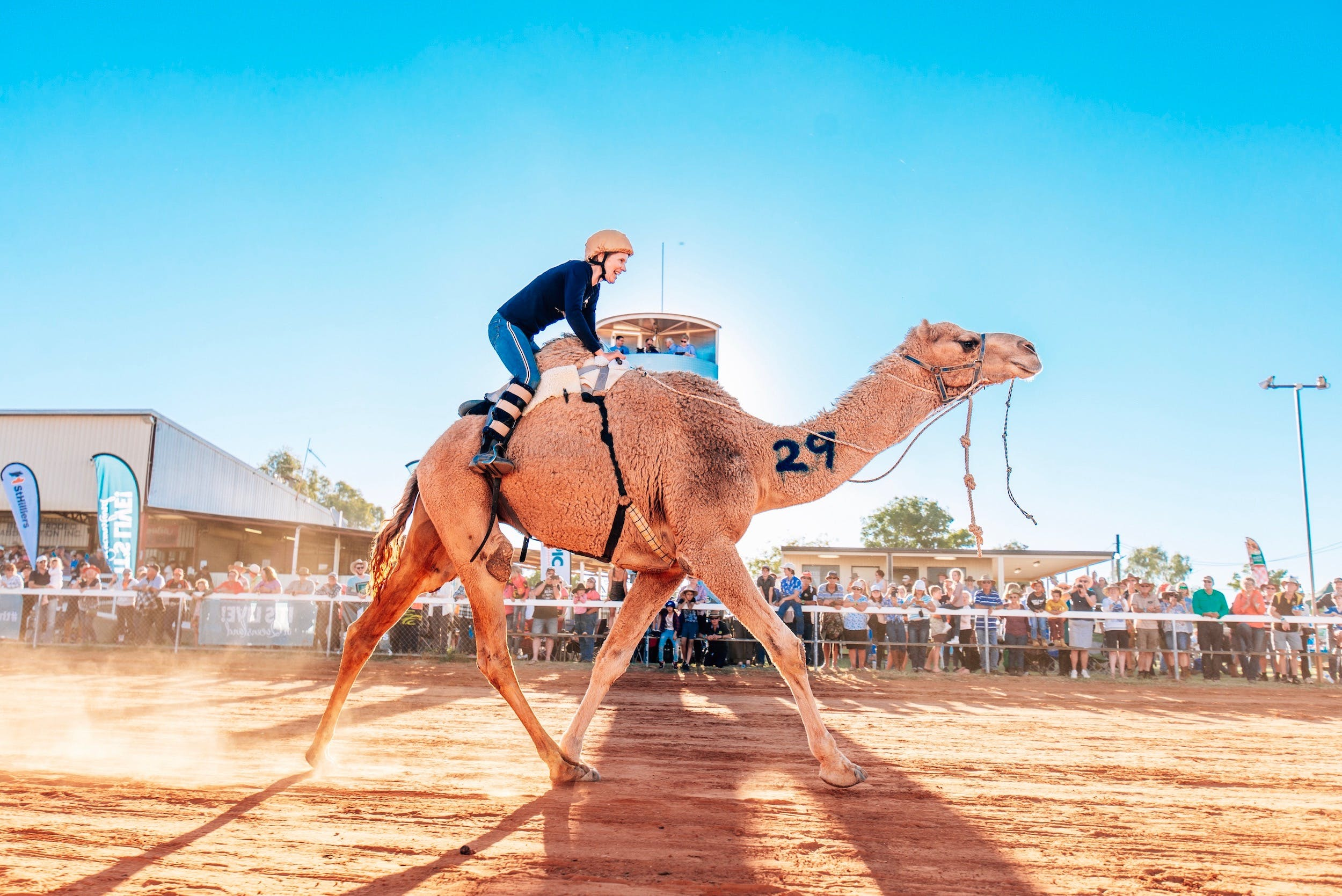 Boulia Camel Races - Bundaberg Accommodation